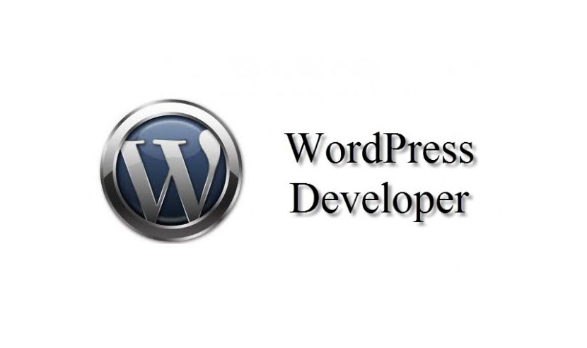 Best Way To choose Expert WordPress Developer