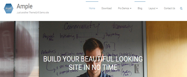 WordPress theme Ample