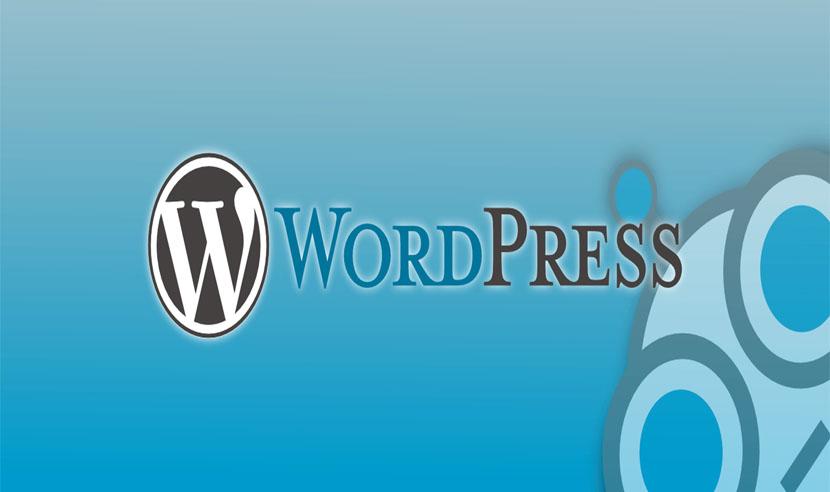 responsive wordpress theme 2015