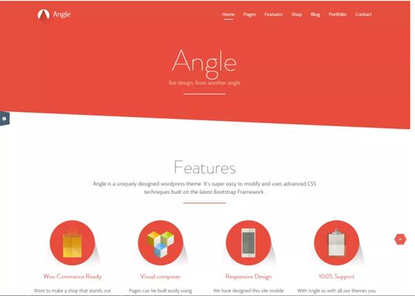 WordPress Theme Angle