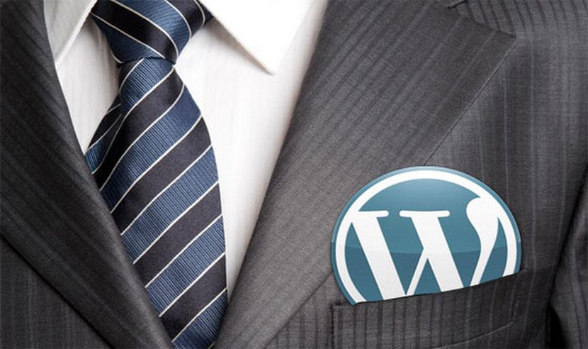 wordpress developer image