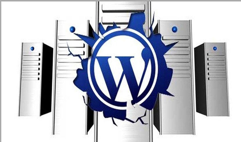 top web hosting themes