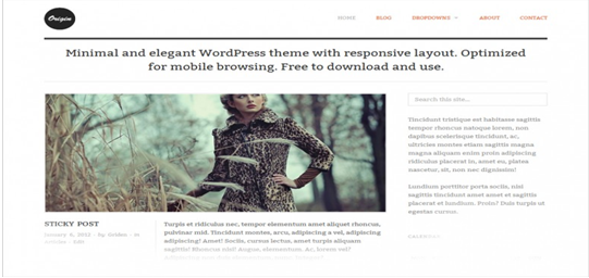 WordPress theme Origin