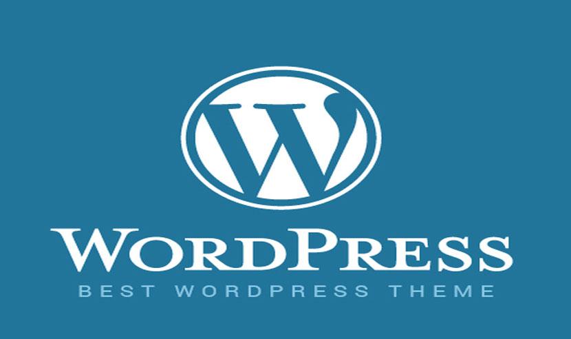 image of best wordpress theme