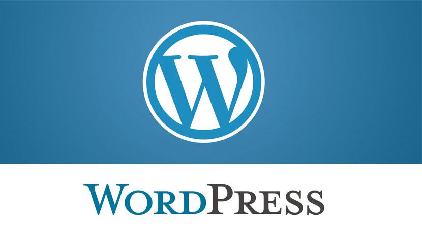 advantages of developing bespoke wordpress theme