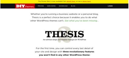 WordPress theme Thesis