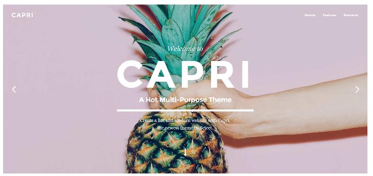 WordPress theme Capri
