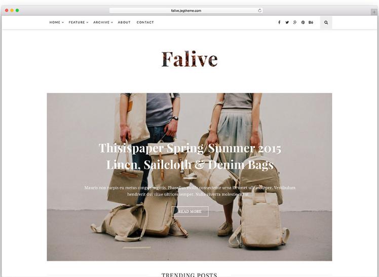WordPress theme Falive
