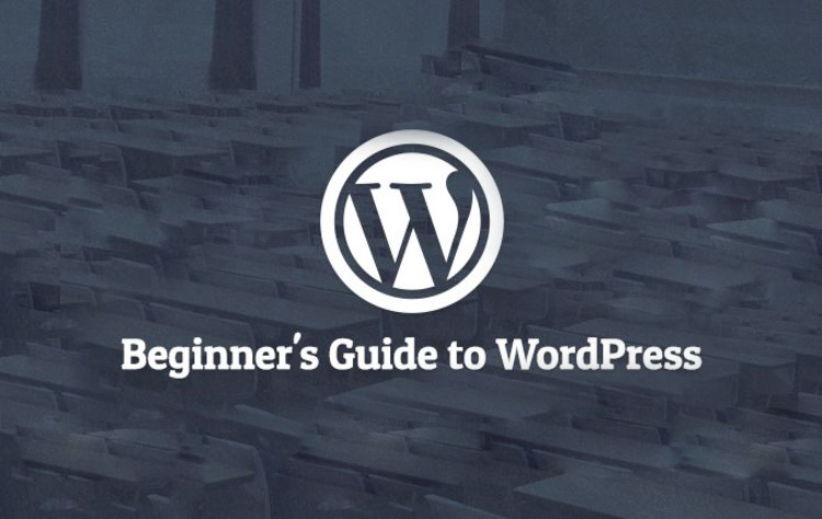 Beginners guide to wordpress