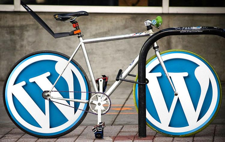 Custom WordPress Development Sydney