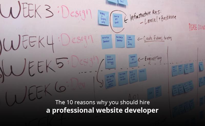 professional website developer
