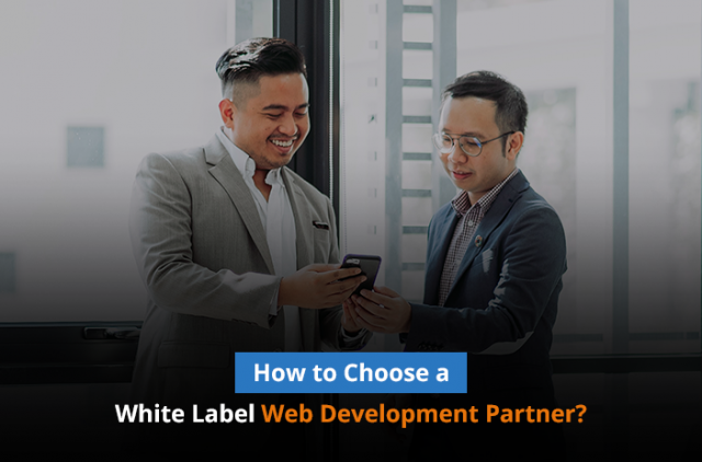 How to Choose a White Label Web Development Partner?