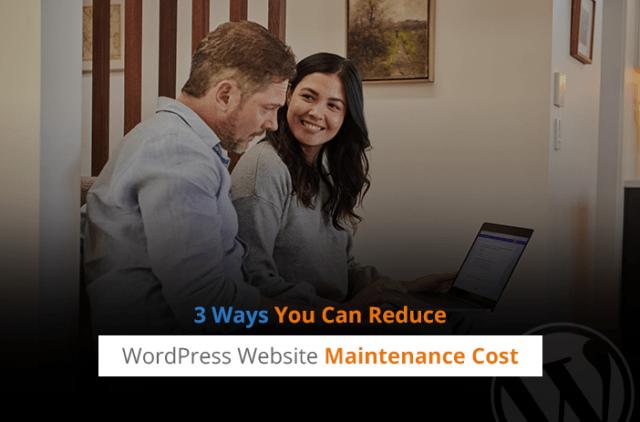 3 Ways You Can Reduce WordPress Website Maintenance Cost