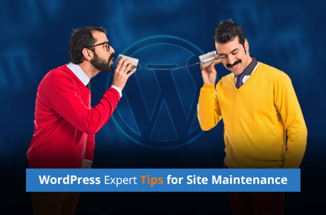WordPress Experts Share Maintenance Tips To Keep Your Site In Shape